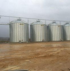 flat bottom grain silos 3